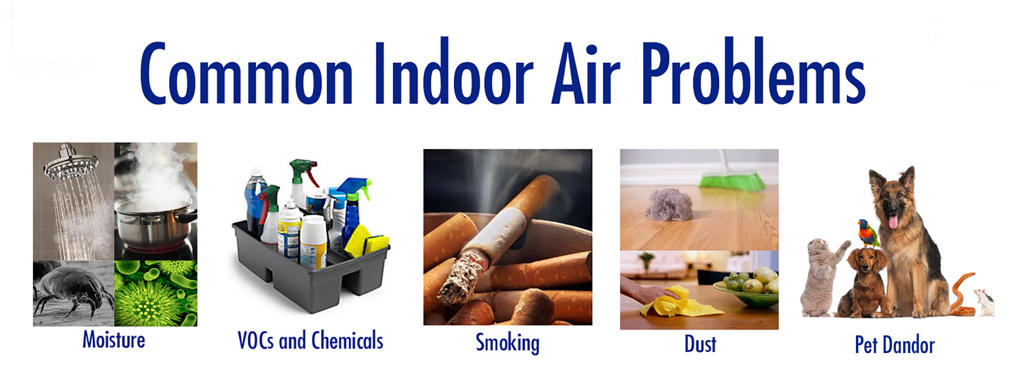 Expert discusses environmental medicine and need for for Indoor air quality design